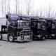 Thomas Weers Erdbau LKW-Flotte Scahnia schwarz